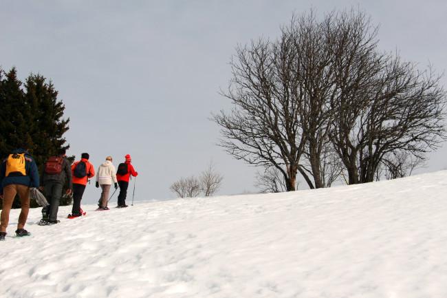 Voyage entreprise insolite, idées séminaires teambuilding Montagne