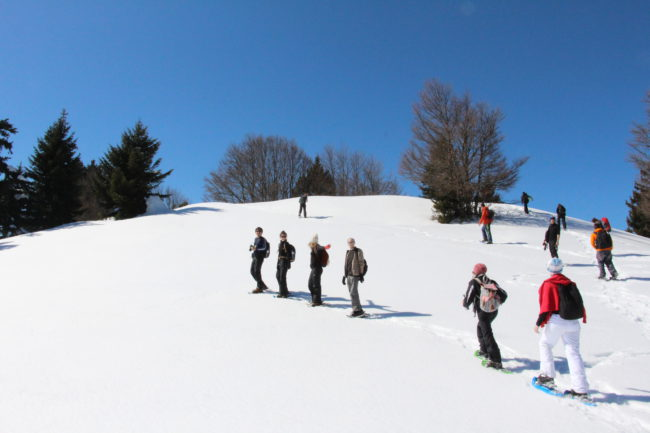 séminaire sur mesure sports d'hiver