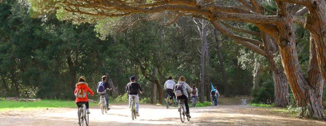 A vélo sur l'île de Porquerolles