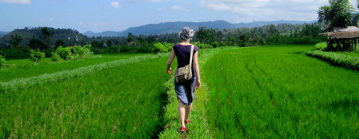 Voyage expérientiel à Bali