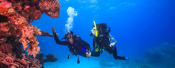 plongée expérientielle